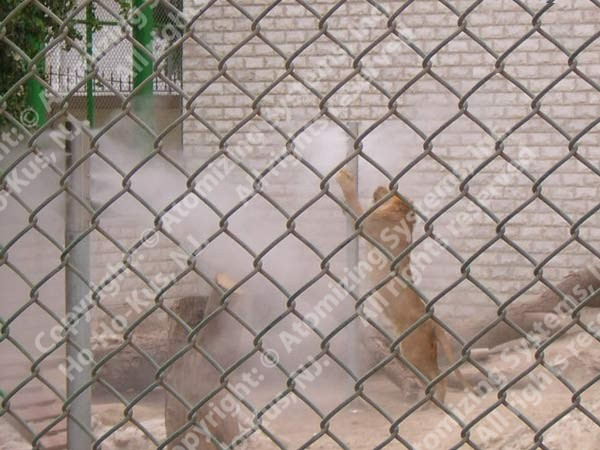 Kuwait Zoo Project
